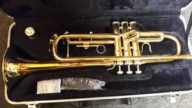 Trompeta Freedom