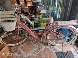 Bicicleta 18 cambios