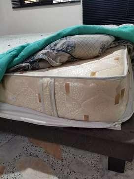 Base en madera y colchón en espuma