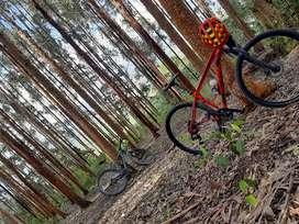 Mountain Bike  Rin 29  talla M + casco GW