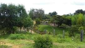 vendo casa lote en vereda San Isidro Piendamó