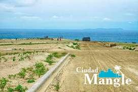 CUOTA MENSUAL DE 250 USD, LOTE FRENTE AL MAR, PROYECTO CIUDAD MANGLE, LOS CRUCES MANABÍ. S1