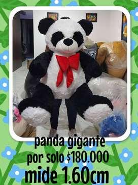 Oso panda de 1.60cm por solo 180.000
