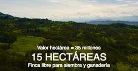 Vendo permuto finca 15 hectareas santander