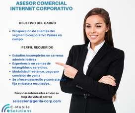 EJECUTIVO COMERCIAL PYMES