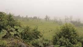 Hacienda 622 hectáreas En venta - Ranch 622 hectares For sale