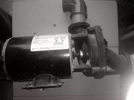Bomba Autodrenante hidromasajes 3/4 HP