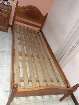 Dos camas de una plaza de algarrobo