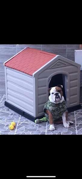 Casas para Perro para Lluvias