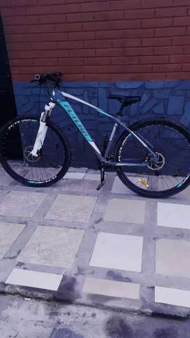 Mountain bike Rod.29