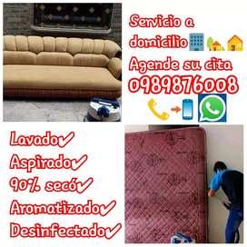 Cotiza tu servicio y reserva. Servicios garantizados para tus muebles colchón etc. Limpieza y lavado