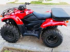 CUATRIMOTO HONDA MOTOR 420 2013 4X4