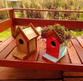 Casitas pájaros con techo verde