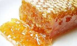 Miel de abejas en panal