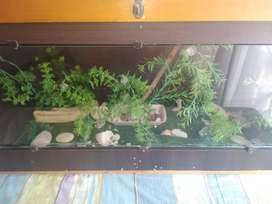 Pescera en madera
