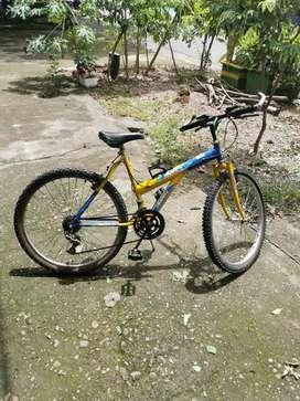 Cicla con cambios Shimano económica