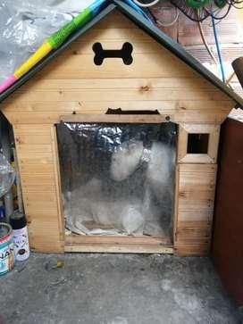 Venta Casa para perro