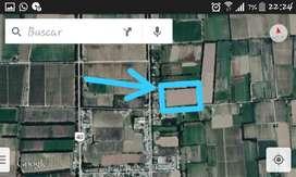 Terreno en venta 1200 m² Total o fraccionado San Carlos, Mendoza