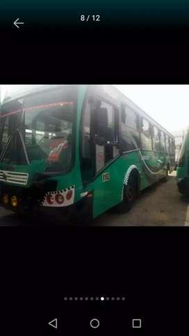 Bus modasa