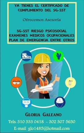 Implementación de los sistemas de seguridad, calidad y ambiental