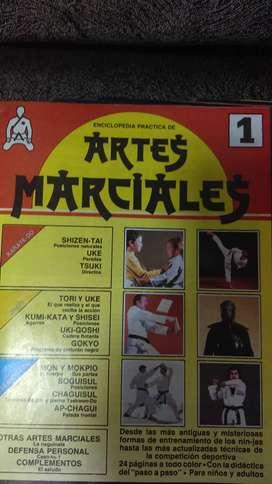 coleccion enciclopedia practica de  artes marciales año 1988