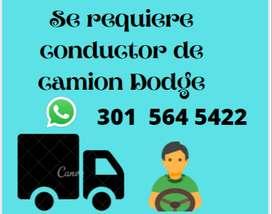Conductor de camión dodge