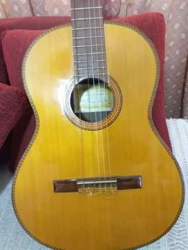 Guitarra criolla serie E de concierto antigua casa nuñez