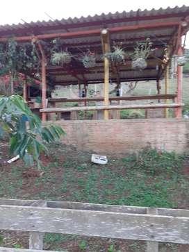 Vendo Finka Carbonero Vijes 2 Plazas