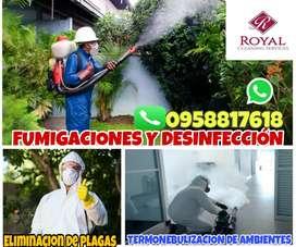 Servicio de fumigaciones, control de plagas y desinfección Manta Portoviejo