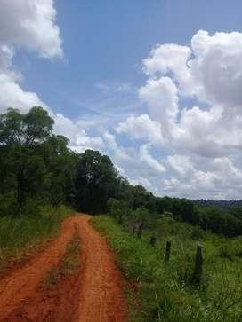 Vendo chacra de 15 hectareas en Misiones, hermoso lugar con arroyo de importante caudal de agua. Muy buenos caminos