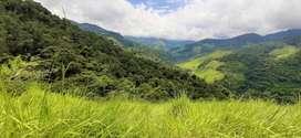 Finca para producción y turismo de 68 hectáreas.