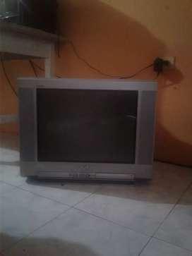 televisor y secador