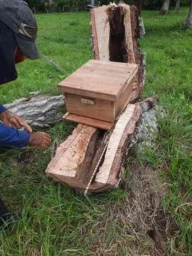 Apicultura  fabricante de  cajones en  madera de  1ra