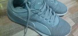 Zapatillas PUMA color plomo modelo actual fichon gente que sabe se lleva en una.
