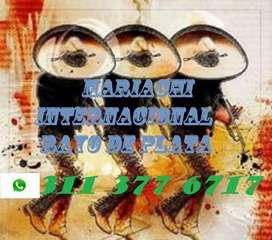 MARIACHI RAYO DE PLATA, PROMOCIÓN SOLO POR HOY