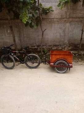 Se vende remolque para bicicleta