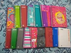 Cuadernos académicos norma