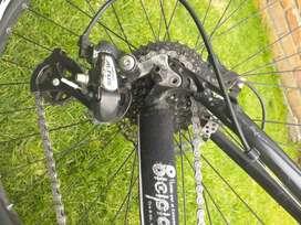 Bicicleta gw enduro cuadro animal effect