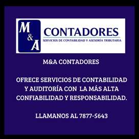 Contabilidad y auditoria, contador independiente