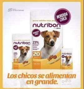 Nutribon Perro adulto razas pequeñas x 8 kgrs