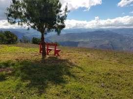 Granja  de 6 hectareas con hermosa Cabaña