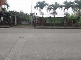 Se vende una finca de una hectarea con casa al filo de carretera con plantaciones de cacao y arboles frutales.