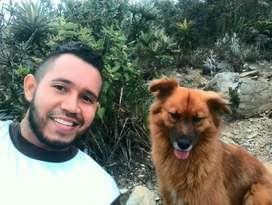 Paseador de Perros #rú
