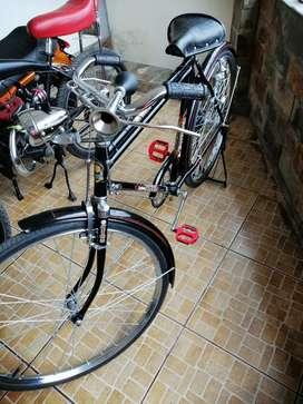 Bicicleta clásica de paseo Eastman (la panadera)