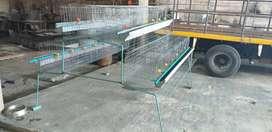 Modulo para gallinas ponedoras y mucho más para producción