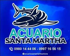 Acuario Santa Martha Chone