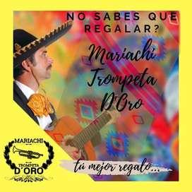 Mariachi Trompeta D'Oro