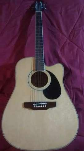 Vendo guitarra Electroacustica