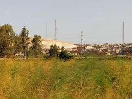Vendo terreno en Pisco 7 hectáreas $180,000 cada Ha