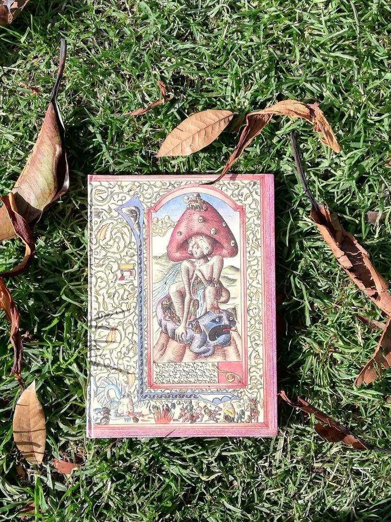 Cuadernos con Portadas Ilustradas, 0